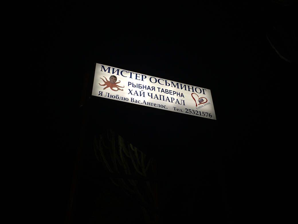 мистер осьминог в Лимасоле
