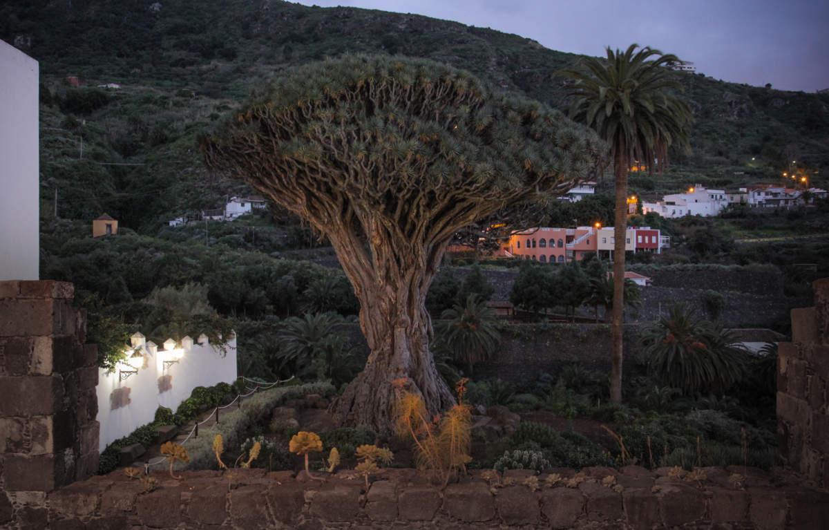 Парк дель Драго