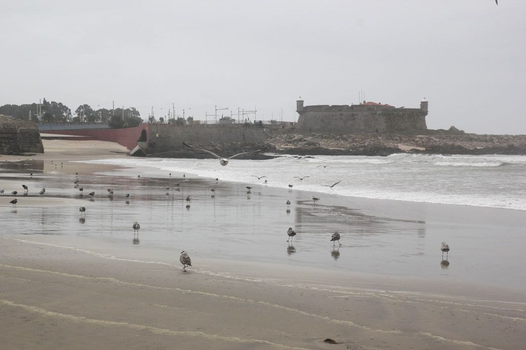замок на пляже около Порту