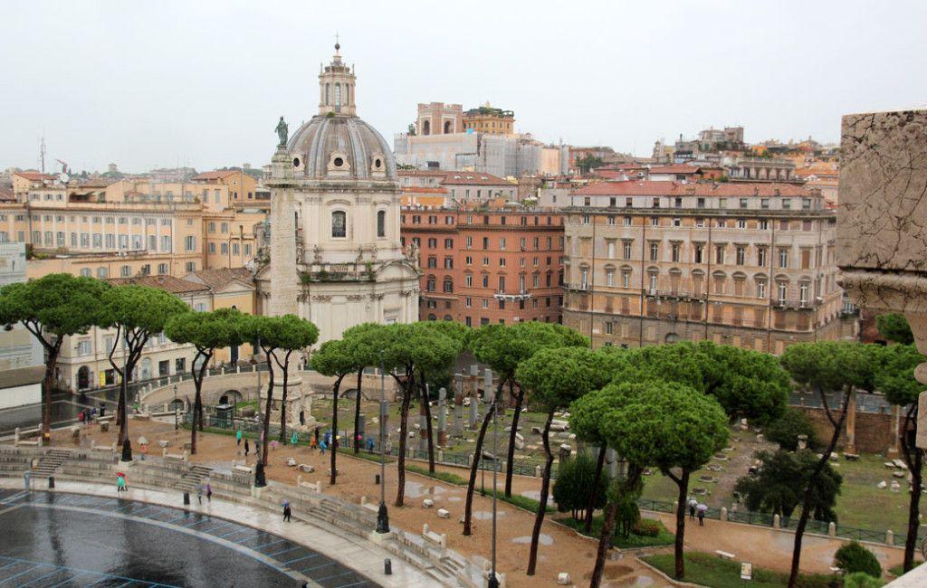 Сосны Пиния в Риме