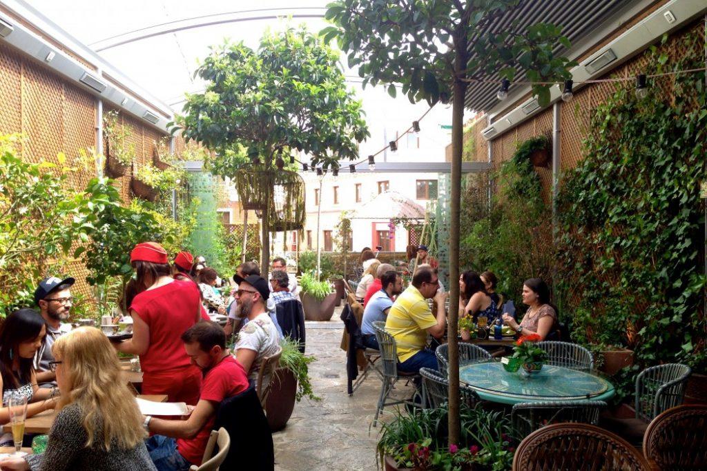 Garden of Salvador Bachiller