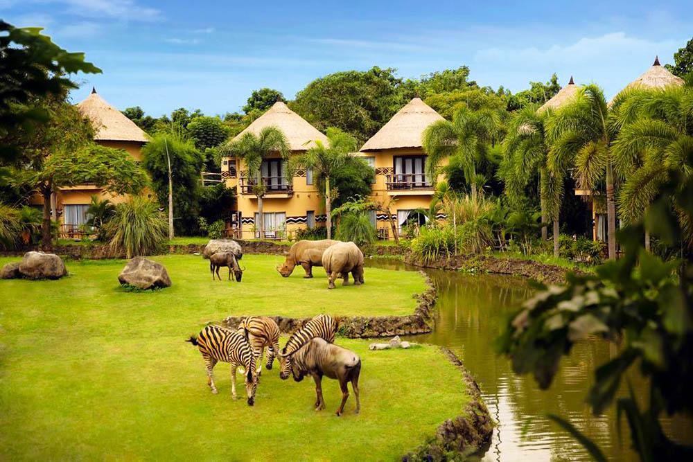 Bali Safari