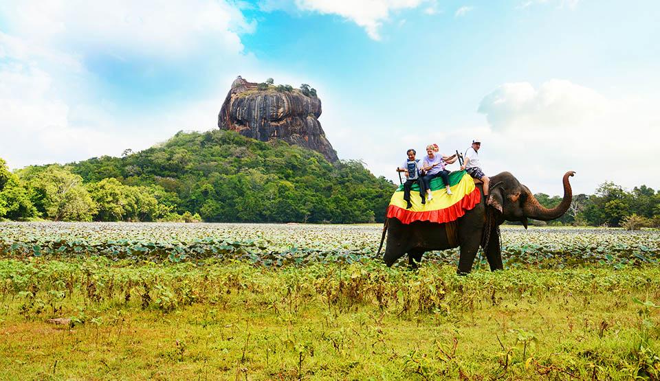 Шри-Ланка из Киева